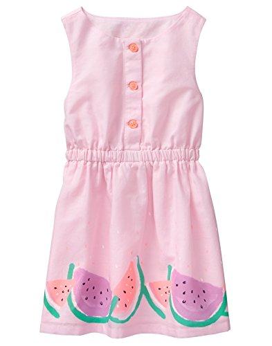 Gymboree Girls' Toddler Sleveless Dress with Citrus Border, Petal Pink, 5T