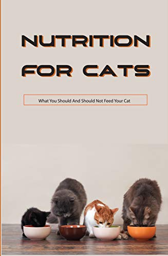 Nutrition For Cats- What You Should And Should Not Feed Your...