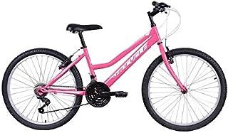 Amazon.es: bicicleta 24