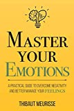 Master Your Emotions:...image