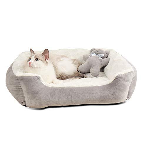 PETCUTE Cuccia per Cane da Interno Lettino per Cani Lavabile Cuccia Gatto Ortopedico Divano Letto Cane Gatto Peluche Morbido(Grigio 56 * 46 * 17cm)