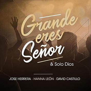 Grande Eres Señor (Solo Dios) [feat. Hanna León & David Castillo]