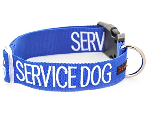 Dexil Limited Service Dog Blue Color Coded S-M L-XL Buckle Dog Collar (Do Not Disturb) Prevents Accidents by Warning Others of Your Dog in Advance (L-XL Collar 15-25 Lx1.5 W)