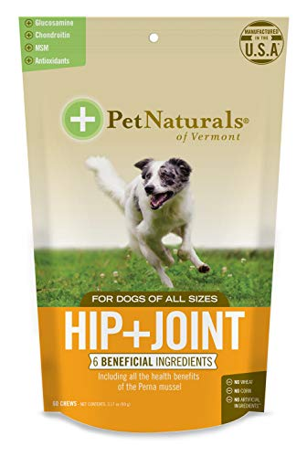 Pet Naturals  Hip  Joint for Dogs Daily Joint Support Supplement 60 BiteSized Chews 070089E060