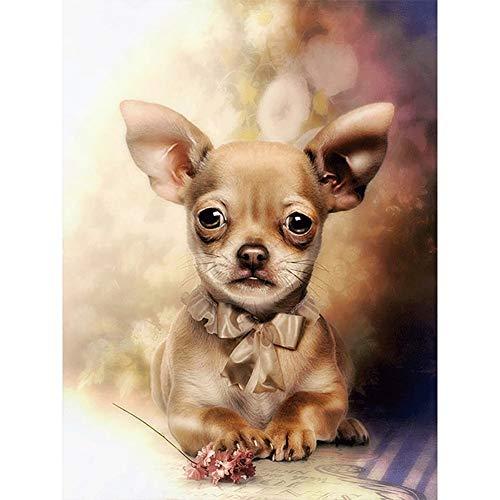Kit de Pintura de Diamante 5D Pintura de Diamante Paisaje Diamante Bordado Pintura Rhinestone Punto de Cruz Cute Dog Kit de Marcador de Punto de Cruz-Round Drill,60x80cm