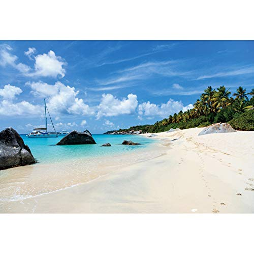 DORCEV 7x5ft Summer Beach Photography Backdrop Fishing-Boat Coconut Forest Rocks Background Blue Sky White Clouds Summer Leisure Party Banner Photo Studio Props Vinyl Wallpaper