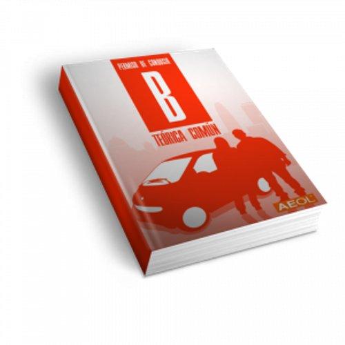Manual AEOL Permiso B 2021 Prepárate el Teórico del Carné de Coche Libro Carnet de Conducir Valmoni Sport