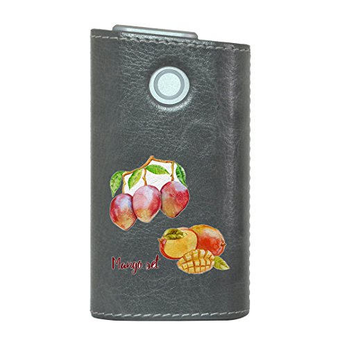 glo グロー グロウ 専用 レザーケース レザーカバー タバコ ケース カバー 合皮 ハードケース カバー 収納 デザイン 革 皮 GRAY グレー マンゴー 果物 夏 014791