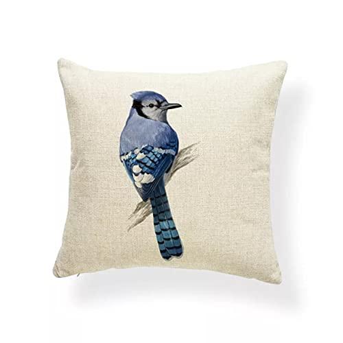 DQLREW Funda Cojine Funda Almohada Fundas de cojín de tucán de Loro jilguero Almohada de pájaro Azul Jay Hotel de Estilo nórdico para niños Fundas de Almohada arpillera pequeña Colorida