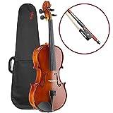 Stagg VN-4/4 EF Geigenset 4/4, vollmassive Violingarnitur mit Ebenholzgriffbrett im Softkoffer