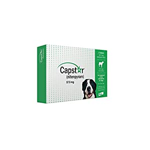 Capstar Fast-Acting Oral Flea Treatment for Large Dogs, 6 Doses, 25.1 – 125 lbs (Previous Packaging), Green (CA4925Y07AM)