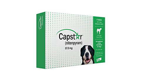 Capstar FastActing Oral Flea Treatment for Large Dogs 6 Doses 251 – 125 lbs Previous Packaging Green CA4925Y07AM