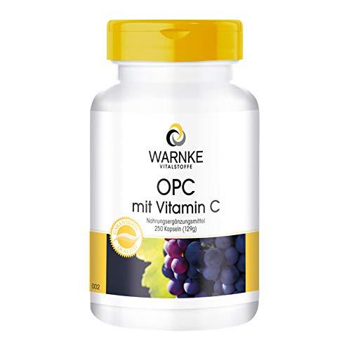 OPC Kapseln - aus Traubenschalen-Extrakt - OPC mit Vitamin C - vegan - 250 Kapseln - Großpackung