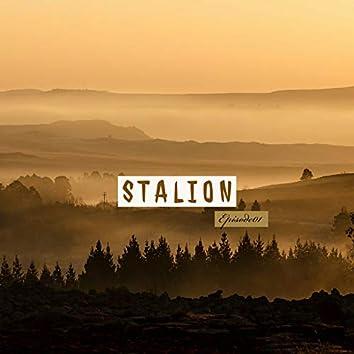 Stalion Episode 01