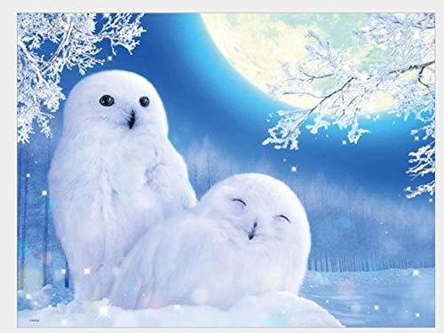 AMDPH Fantasy Owl Schneeszene Bild DIY 5D Diamond Painting Kits, Vollbohrer Round Diamond Crystal Gem Arts Gemälde Für Schlafzimmer, Esszimmer Und Heimtextilien