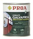Esmalte directo sobre galvanizado Galvaproa. Pintar galvanizado sin necesidad de imprimación.