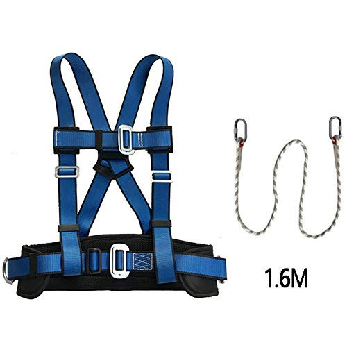 RSHJD Verstellbarer Sicherheitsgurt Halben Körper Sicherheitsgurt mit Sicherheits Seil für den BAU Elektrischer, den Schutz der Bautechnik (4 Arten) D