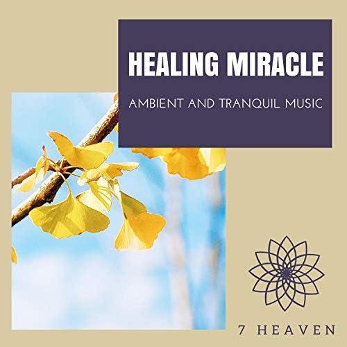 Crystal Chakras, Liquid Ambiance, Serenity Calls, Ambient 11 & Spiritual Sound Clubb