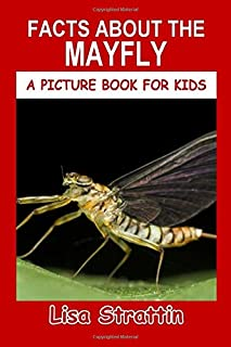 Facts About the Mayfly (A Picture Book for Kids)
