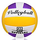 Wisdom Wolf Official Size 5 Volleyball Beach Volleyball Soft Touch Volleyball for Outdoor and Indoor Games