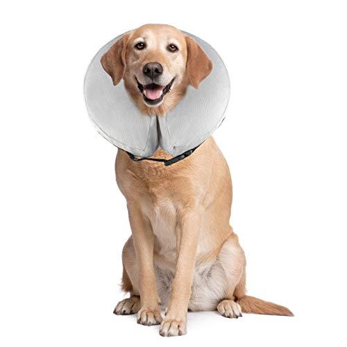 PET SPPTIES aufblasbar Halsband für Haustier Hund Katze bequem weich Recovery Schwimmen Schutz-mit Magic Reißverschluss für Haustier Hund Nackenschutz Kissen PS005 (M/Grey)