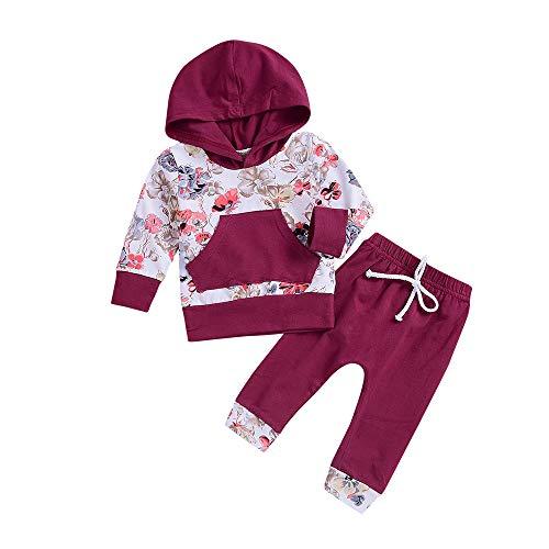 Ropa Bebe otoño Invierno 2018, Recién Nacido bebé niño niña Floral Tops Sudadera con Capucha Pantalones Trajes 2pcs Conjunto de Ropa