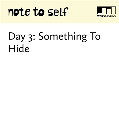 Day 3: Something To Hide audiobook cover art