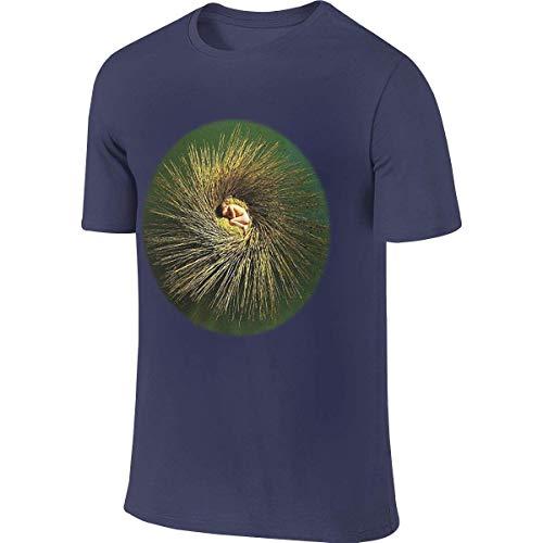 Customized Funny Short Sleeve Peter Gabriel - OVO T Shirts for Man,Tops Tees T-Shirts & Hemden(Medium)