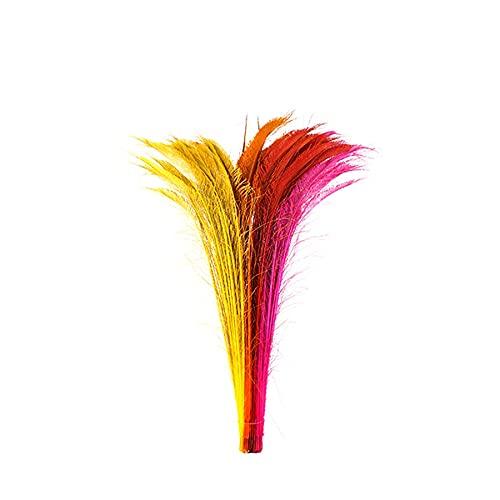 ZUCKER Peacock Swords Bleach Mix Dyed – Fiesta Mix