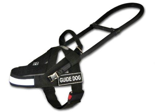 Dean and Tyler Guide Light Nickel Hardware Nylon Dog Harness