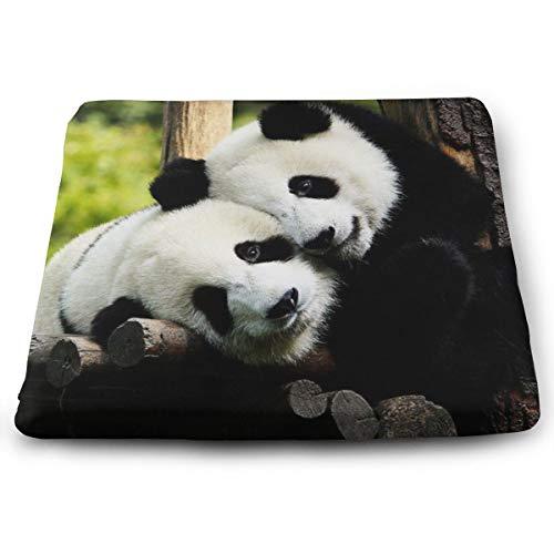 Memory Foam Pad zitkussen. Autostoel kussens om hoogte te verhogen - bureaustoel Comfort kussen - Panda Bear Desktop Panda Bear Cool