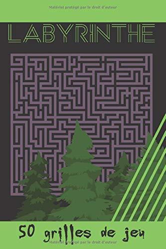 Labyrinthe - 50 grilles de jeu: Cahier en français - volume 2