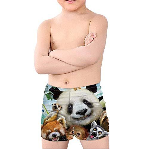 Coloranimal Teen Boy Cool Animal T-Rex Dinosaurier Badehose Batjing Anzug Beach Board Shorts Swinwear Quick Dry 5-14Y Gr. 9-10 Jahre, Tier Panda Hund