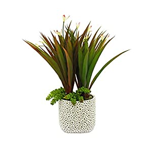 RuPost Artificial Plants: Grass with Two Shoots and Succulents in pots Large Ethno