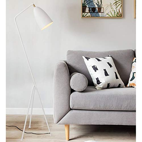 FAFZ Nordic Lampada da Terra, Lampada di Lettura, Regolabile Universale Capo Design, Adatto A Letto Soggiorno Ufficio (40 × 40 × 142 Cm)