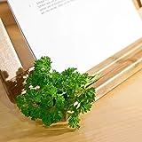 Relaxdays Buchstütze Bambus H x B x T: ca. 23,5 x 32 x 12 cm Buchständer für Koch- und Backbücher Buchhalter als Leseständer und Notenständer Kochbuchhalter für dicke Bücher Rezepthalter Holz, natur - 5
