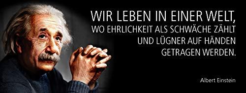 FS Albert Einstein spreuk: wij leven in een wereld waar eerlijkheid als zwak telt en de kroonluchter op handen worden gedragen. Zwarte metalen bord bordje gewelfd Metal Sign 10 x 27 cm