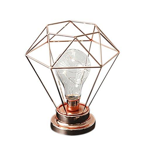 LEDMOMO Edison Style Metalldraht Lampe Licht LEDs Draht Lichter Batteriebetrieben Warmweiß (Gold)