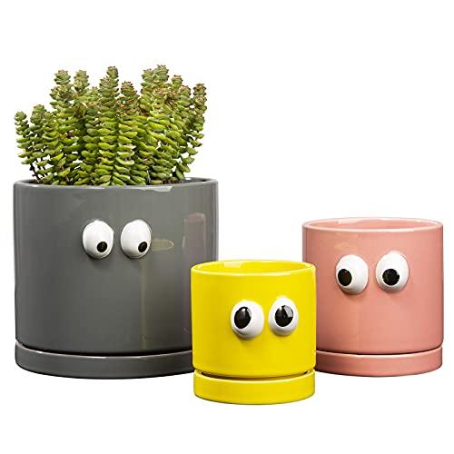 3 Macetas para Plantas Yangbaga 5.9 + 3.9 + 3.1inch Macetas Suculentas de Cerámica con Platillo, Macetas Redondas y Modernas Decorativas con Orificio de Drenaje para Jardín Interior y Exterior