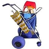 RollX Foldable Storage Wagon Beach Cart (Balloon Wheels)