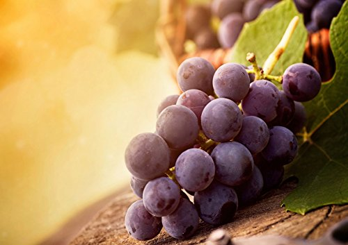 Poster Purple grapes Grappe de raisins Wall Art