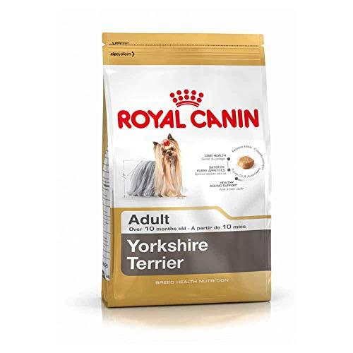 RoyalCanin Yorkshire Terrier Adult 1.5 kg | Pienso para Alargar la Vida de tu Perro Retrasando el Envejecimiento | Fortalece Defensas, Evita la Formación de Sarro y Mantiene el Pelo Sano y Radiante