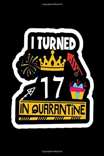 I Turned 17 In Quarantine: Funny Quarantine Birthday Journal Gift - 17th Birthday Present Gift - Lined Blank Notebook 120 Pages - 17 Years Old Birthday Gifts For Women, Men, Kid, And Everyone.