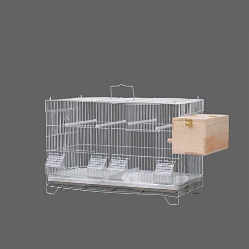 ffshop Jaula para Pájaros Villa de Lujo cría Inicio Jaula for pájaros, Ideal for Periquitos, Canarios, pinzones Cebra y pájaros más pequeños.Incluye Perchas y Cuencos for su Comida Grande paja