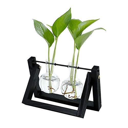 Starmood Hydrokultur-Glas-Pflanzgefäß, Blumenvase mit Holzständer, Tischdekoration, Schwarz, Double Vase