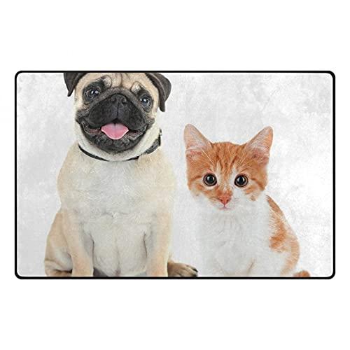 N/A Impresión 3D De Alfombrillas Alfombras Antideslizantes Pug Adorable Gatito Y Cachorro Fotografía Animal Divertido Mascotas Jóvenes Imagen Feliz Alfombra Decorativa Color Crema Naranja