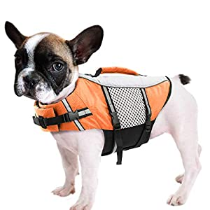 Queenmore Dog Life Jacket Swimming Vest Lightweight High Reflective Pet Lifesaver with Lift Handle, Leash Ring Orange,XS