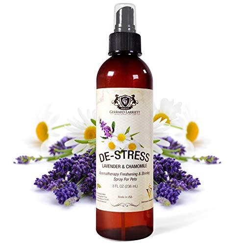 Lavendel & Kamille Aromatherapie & Glänzende Freshening Spray für Haustiere, Hundepflege Spray Dog Parfüm, Köln & Pet Dog Odor Eliminator