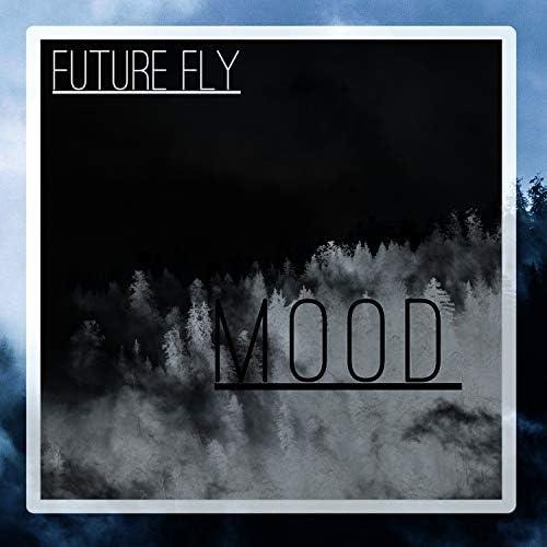 Future Fly