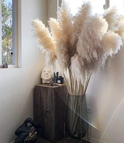 MEETFUN 100cm weiße natürliche Schilf getrocknete Blume Big Gras Bouquet Hochzeitsblume Zeremonie Dekoration Moderne Dekoration 10St